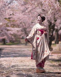 Cherry blossoms and Geisha. Geisha Japan, Geisha Art, Kyoto Japan, Tokyo Japan, Japanese Kimono, Japanese Art, Japanese Dresses, Japanese Beauty, Asian Beauty