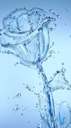 Water Flowers iPhone Wallpapers