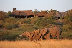 An Eco-Luxury Experience in Kenya…at the ol Donyo Lodge Kenya Travel, Africa Travel, Natural High, Private Safari, Mount Kilimanjaro, Virtual Travel, Sustainable Tourism, Out Of Africa, Game Reserve