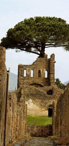 Pompeii, Italy...I definitely want to go back one day!