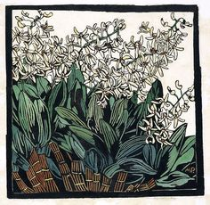 Australian Rock Lily, hand-colored woodcut by Margaret Preston, Australian artist Henri De Toulouse Lautrec, Australian Painters, Australian Artists, Art And Illustration, Gallery Of Modern Art, Art Gallery, Linocut Prints, Art Prints, Woodcut Art
