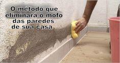 O método que eliminará definitivamente o mofo das paredes de sua casa | Cura pela Natureza