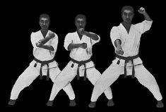 Gedan uke zuki Martial Arts, Combat Sport, Martial Art
