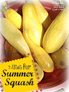 7 Creative ways to Use Summer Squash. This is super cheap this time of year so take advantage of all the sales!