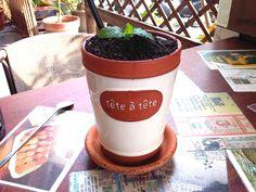 Mint pot