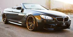 Black BMW M6 F12 Convertible on Bronze PUR LX09