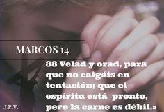 ORANDO A DIOS POR TI: MARCOS 14