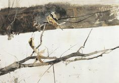 Andrew Wyeth (1917 — 2009, USA)  Branch in the Snow. 1980  watercolor on paper. 21.4 x 30 in. (54.4 x 76.2 cm.) © Andrew Wyeth
