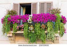 a Flowery balcony in a city street - stock photo