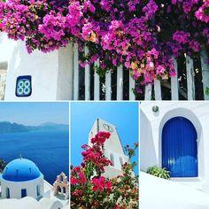 chilltime in #Santorini #whiteisland #church#churchingreece #Greece#greeceislands#volcano#traveling#traveltheworld#instagreece#dnescestujem#balkon#white#whiteandblue#whiteisland#ilovetravelling#utazasok#utazas#santorinigreece#santoriniisland#oia#bougainvillea#dnescestujem#greecechurches#grecko#gorogorszag#greekislands #cestovanie#welovegreece#santorinigreece#ilovegreece#ilovegreece#ilovegreeceforever by matuskovasilvia
