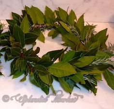 TOGA party... what to wear?  TOGA, TOGA...bay laurel garlands