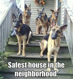 Safest house in the neighborhood.