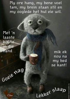 Good Night Wishes, Good Morning Good Night, Good Night Quotes, Afrikaanse Quotes, Goeie Nag, Good Morning Greetings, Positive Thoughts, Best Quotes, Humor