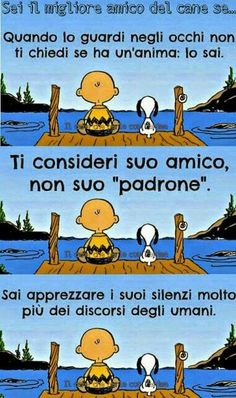 Snoopy, Passionate People, Falling In Love, Dog Cat, Best Friends, Humor, Comics, Memes, Argo