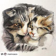 🐈 . うれしいな❤️ 大感激✨💕 . @marinoaco さんが福ちゃんと小梅ちゃんの絵を描いて下さいました❤️ 本当に有難う✨💕 絵心の無いわたしには絶対にできない事だからすごーくうれしい🎉🎉🎉 . 初めてのリポスト😊上手くできたかなぁ❤️ . #Repost @marinoaco with @repostapp ・・・ Today's pawsome cats are @woodtama 's 'Fuku & Koume'💕本日のニャンダフルは @woodtama さんちの福ちゃんと小梅ちゃん✨抱っこし合って寝てるのが可愛くて😻😻絵画展風に描いてみました!✍️🎨✨ ❤︎ ❤︎ ❤︎ #子猫 #cat #catsofinstagram #にゃんすたぐらむ #にゃんだふるらいふ #にゃび #ねこ部 #ペコねこ部 #ねこあつめ #ふわもこ #ふわもこ部 #メインクーンミックス #キャリコ #愛猫 #まなねこ #cats_of_instagram #ピクネコ #スコミックス #サバ白 #多頭飼 #九州ねこ部 #みんねこ #まん丸ねこ部…