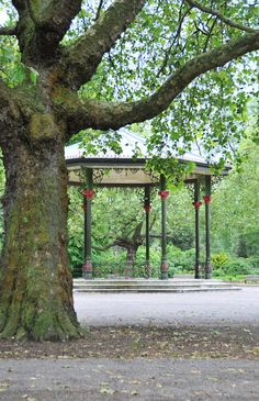 Battersea park. Just across the road from where   I am in London. Very Pretty.