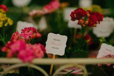 Chá da Bela | Lápis de Noiva