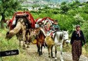 Türkmen, Yörük Kimdir?,türkmenler,yörüklerin tarihi,türkler,