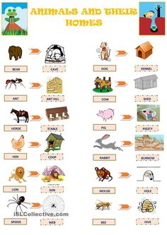 Animals and their Homes worksheet - Free ESL printable worksheets made by teachers Animal Worksheets, Kids Math Worksheets, Animal Activities, Printable Worksheets, Printable Alphabet, Montessori Activities, Alphabet Letters, Learning English For Kids, English Worksheets For Kids