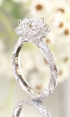 How many #diamonds do you think this gorgeous @greenlakejewelry #engagementring is made up of? This ring would fit perfectly with a stunning #kellyfaetanini #weddingdress. Warning, may be blinding in sunlight! Xoxo @weddingchicks #wctakeover