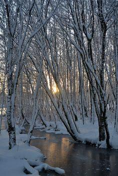 December Snow -- by Mjollnir MacAlba on 500px