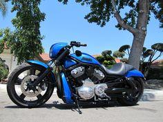 Harley-Davidson V-Rod Night Rod | attached thumbnails 2008 v twin racing street custom type d code