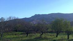 Αυλωνάρι Ευβοίας Greece, Mountains, Nature, Travel, Greece Country, Naturaleza, Viajes, Trips, Nature Illustration
