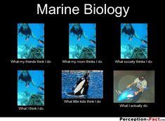 Marine Biology majors that get jobs