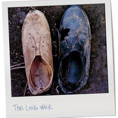 http://on.fb.me/12scPmB #onitsukatigerbr #onitsukatiger #sneaker