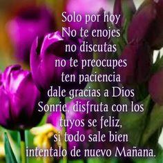 Sólo por hoy no te enojes no discutas no te preocupes ten paciencia dale gracias a Dios sonríe disfruta con los tuyos feliz si todo sale bien hazlo de nuevo mañana