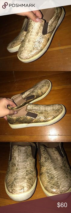 Snake Skin Sneaks Good condition, comfy and cute Shoes Sneakers
