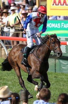 Von Doussa Steeplechase 2015: Lucky 13 for master trainer Eric Musgrove with faultless display by Thubiaan   South Australian Jumps Racing
