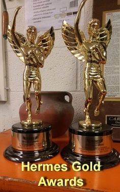 WINS 5 awards in the HERMES CREATIVE AWARDS COMPETITION: