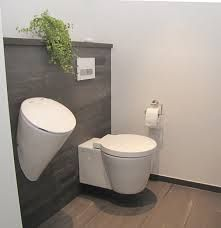Urinal and wall hung toilet