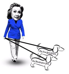 taking lap dogs for a stroll
