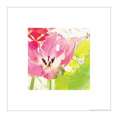 IKEA BILD - Poster, pink parrot - 50x50 cm Ikea http://www.amazon.co.uk/dp/B00GMMF492/ref=cm_sw_r_pi_dp_mDrnvb1TVCPJP