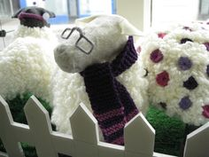 Purple sheep in our practice window for the Blairgowrie Relay for Life June 29th 2013.