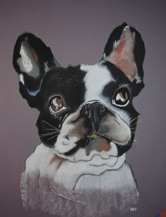 le-bouledogue-francais, French Bulldog, gauche painting.