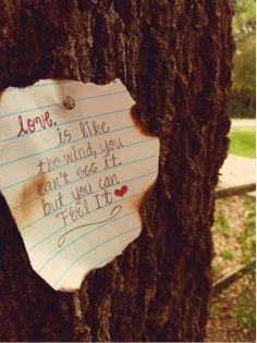 Elsker kjærlighets sitater !