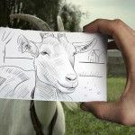 Imagination merged with Reality-Drawing Versus Photography | Best Design Tutorials