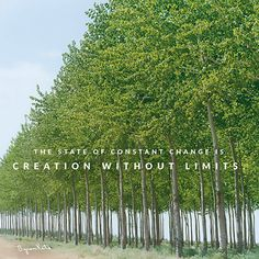 The state of constant change is creation without limits—efficient, free, and beautiful beyond description. thework.com