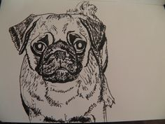 My Mummy drew a picture of me today!