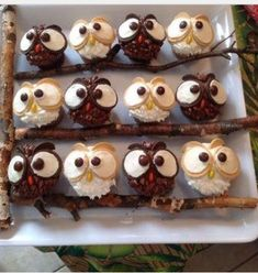 Make Cute Owl Cupcakes Simply by using Oreos & M&M's 🦉🧁 . not my photo Owl Desserts, Dessert Recipes, Owl Cupcakes, Cupcake Cakes, Fruit Cakes, Sweet Cupcakes, Harry Potter Cupcakes, Ladybug Cakes, Edible Arrangements