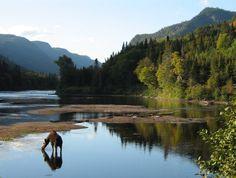 Parc national de la Jacques-Cartier - Sépaq   Parks, Reserves and Resorts   Quebec City and Area