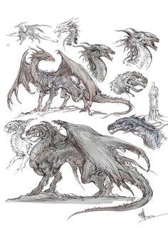 Dragon designs. #design #idea #anatomy #wyvern  #heads #body #muscles #reptile #lizard #beast