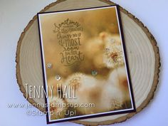 Smallest Things Changing Seasons Card :: Jenny Hall