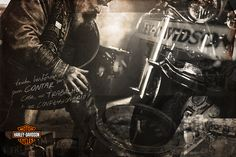 Harley - Só Títulos