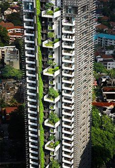 Green Design wird wirklich grün: Das Architekturbüro Woha aus Singapur entwickelt visionäre Hochhäuser, die nicht nur die gängigen Standards nachhaltiger Gestaltung übertreffen, sondern gänzlich von der Natur erobert werden. In luftigen Höhen und weit über großstädtischen Smogschwaden verwandeln sie Wohn- und Bürokomplexe in paradiesische Lagunen.
