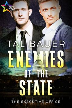 Enemies of the State (Vallie's Review) | Gay Book Reviews – M/M Book Reviews
