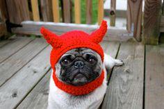 Little Devil Dog Hat. So wrong but so adorable. #pug